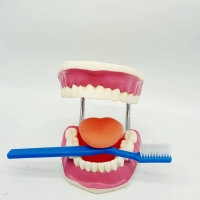 Dental moving stereoscope is an excellent type