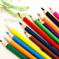 Pencil Colors with Sharpener - Long