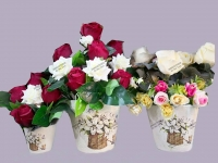 Set vases with roses