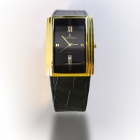 Swiss Titanic watch for men