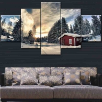 Panel sequential and distinctive of snowboard 5pcs