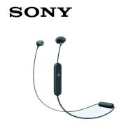 SONY EARPHONE WIC300