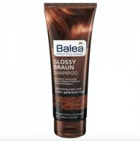 B408 glossy braun shampoo