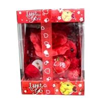 Valentine s Day Gift
