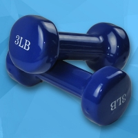 Dumbbell Fitness and 3LB Home Sports Rooms
