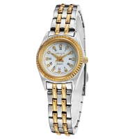 WeiQin Quartz Luxury Women Watch