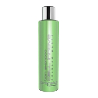 Abril Et Nature bain shampoo Cell Innove Steam Cells250ml