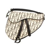 Dior triangle hand bag