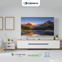 TV DENKA 49INCH