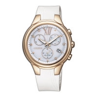 Citizen Eco-Drive Women's Watch - FB1312-06A