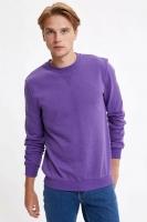 DeFacto Men's Purple Long Sleeves Sweatshirt