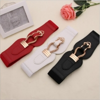 Pin clip elastic waist belt