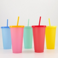 Thermal cup set with straw / multicolor
