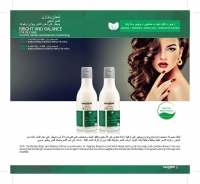 Shampoo treatment of fatty hair problems Bright and Balancink Amazon forest products