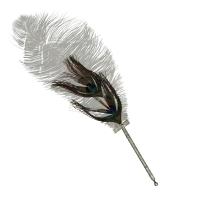 Peacock feather pen