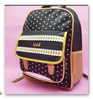 Multi-pocket bag