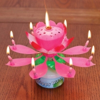 Candle Light Rose