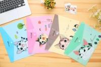 cat  folders